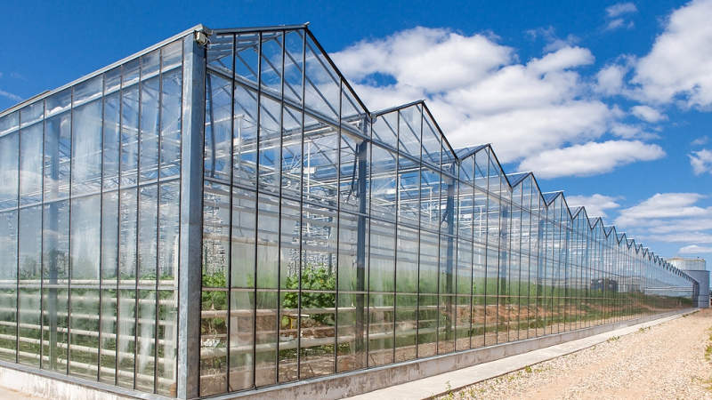 Тепличный комбинат площадью 7,2 га для производства овощной продукции - сметный проект