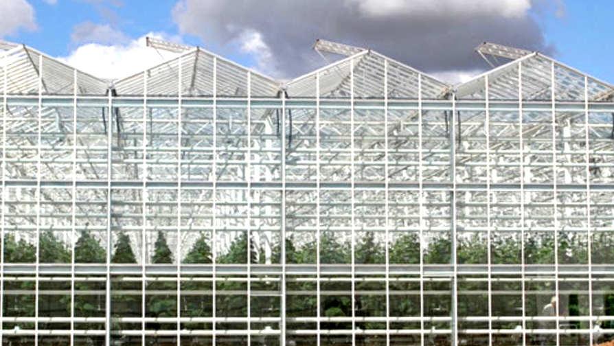 Тепличный комбинат для круглогодичного производства овощной продукции - сметный проект